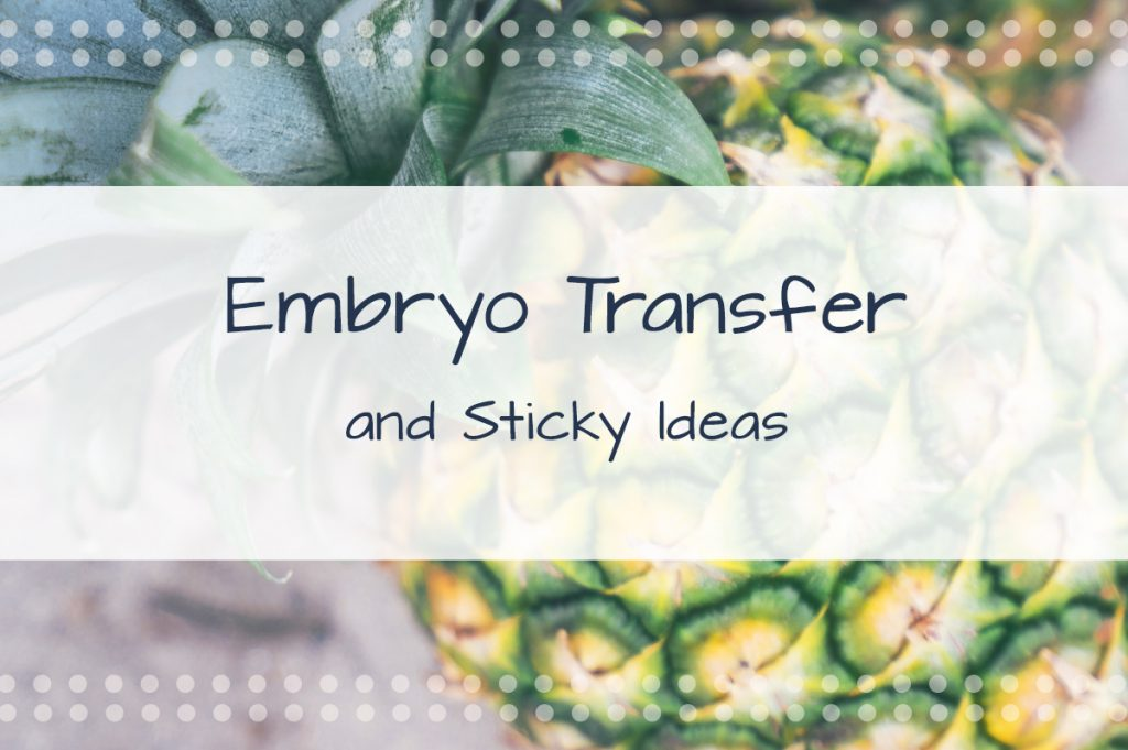 Embryo Transfer & Some Sticky Ideas For Good Luck