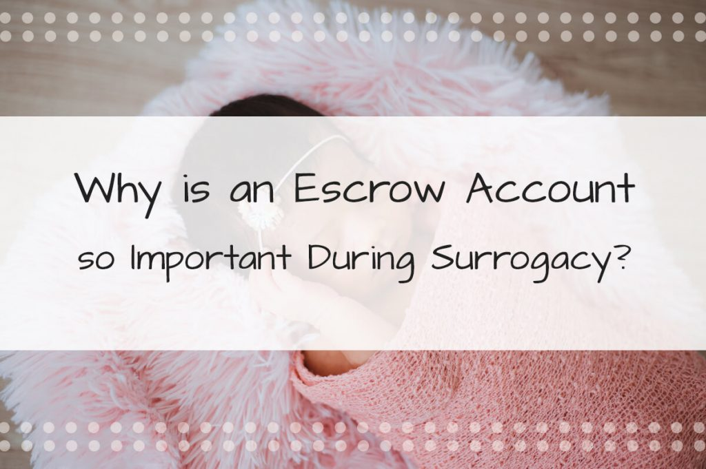 Why Is an Escrow Account so Important During Surrogacy?