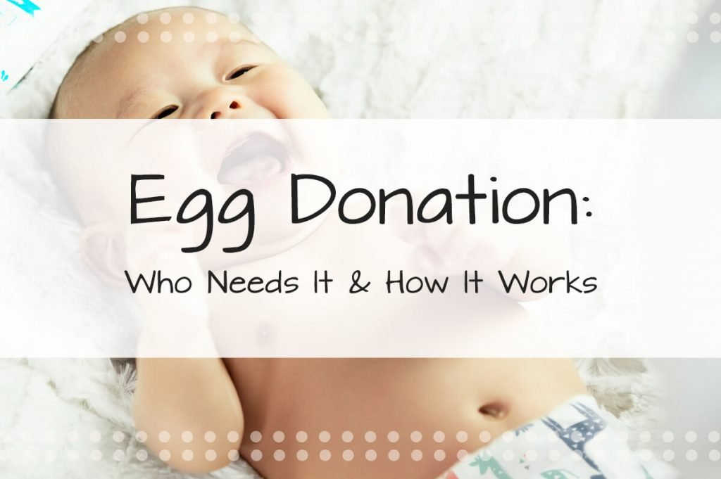 Egg Donation—Who Needs It & How It Works To Help Those Struggling with Infertility Start a Family Through the Process of Surrogacy or IVF