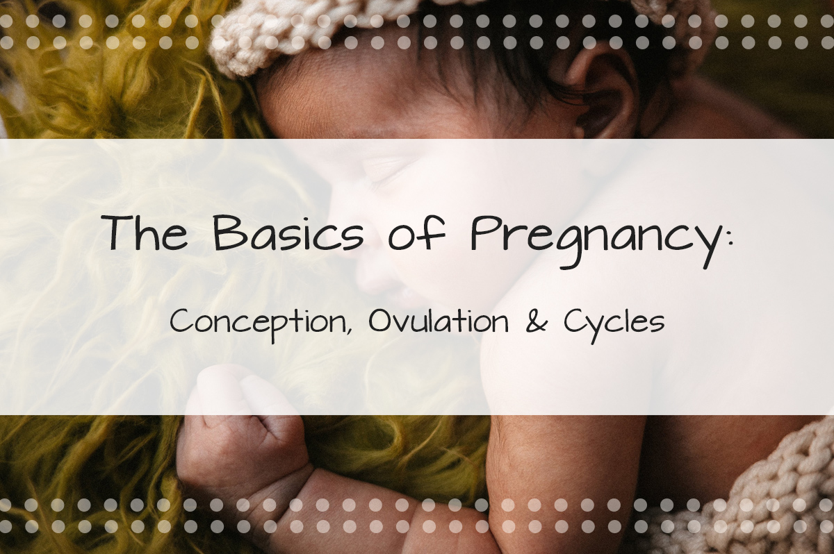 The Basics of Pregnancy, Ovulation, Cycles and How a Woman Gets Pregnant - Made in the USA Surrogacy in Roseville, California