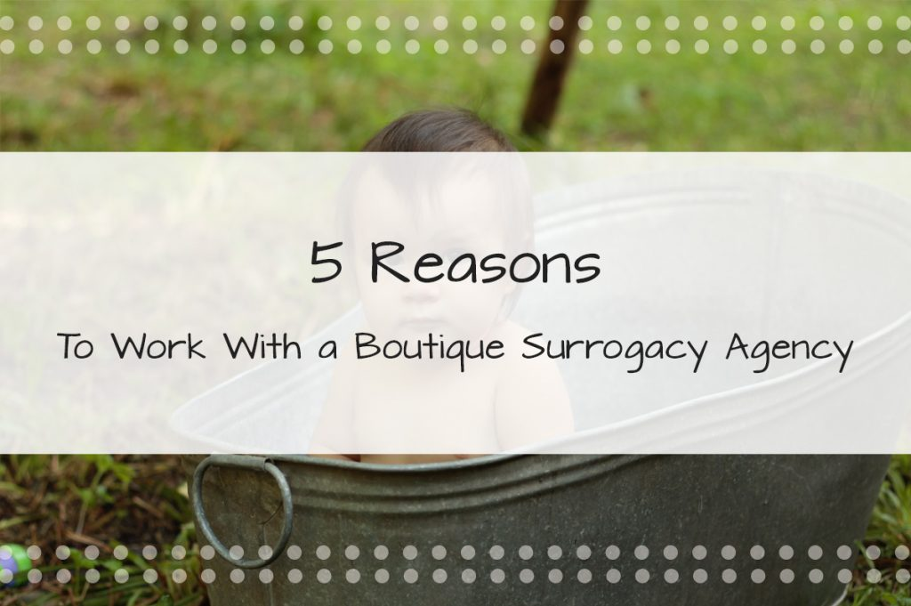 Thinking of Joining Our Boutique Surrogacy Agency in Florida? Here are 5 Reasons to Work with a Boutique Surrogacy Agency in Florida