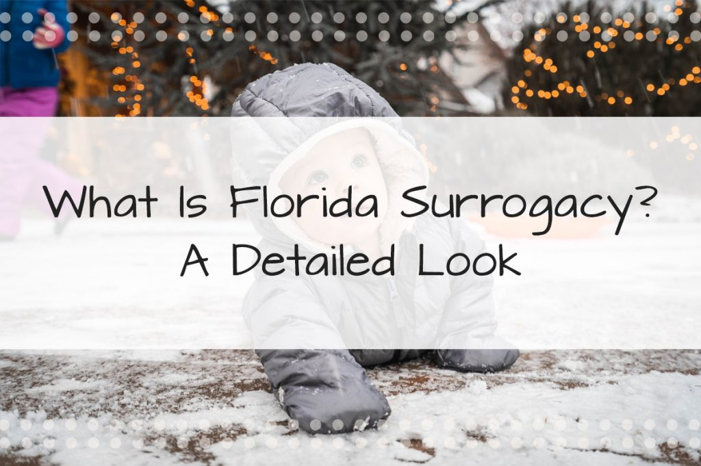 What is Florida Surrogacy?